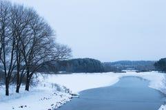 Orillas del río y de la demostración del invierno Árboles y cielo nublado V horizontal Imágenes de archivo libres de regalías