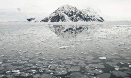 Orillas impetuosas del hielo y del antártico Fotografía de archivo