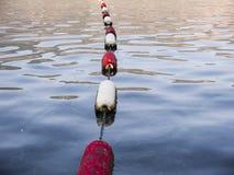 Orin rouge et blanc en eau de mer Photos stock