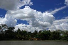 Orinoco River imagem de stock royalty free