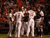 Orioles na kopu Zdjęcie Stock