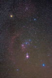 The Orion constellation. A 50mm shots of the king constellation of winter, Orion. In these photo you can see distint the barnard loop nebulae, the great orion royalty free stock images