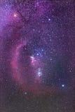 Orion Constellation och Barnards öglasnebulosa Arkivfoton