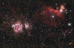 Orion, HorseHead & flammanebulosa Arkivfoto