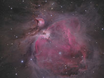 The Orion Nebula stock photos