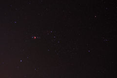 Orion stjärnor i natthimlen Royaltyfri Bild