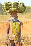 Orissan tribal woman carrying leafs Stock Photography