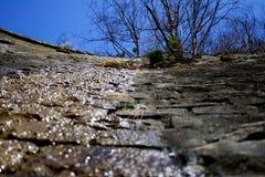 Orizontal horyzont Zdjęcie Stock
