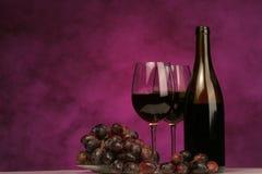 Orizzontale della bottiglia di vino con i vetri e l'uva Fotografia Stock