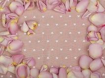 Orizzontale della pagina Rose rosa in un mazzo su fondo Fotografie Stock