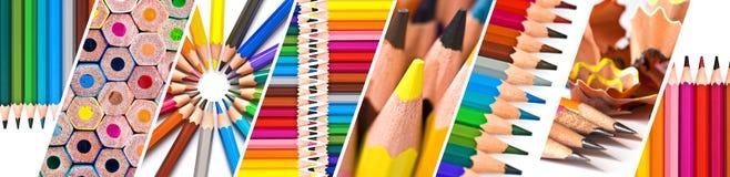 Orizzontale delle matite di legno variopinte, di nuovo alla scuola, insegna panoramica di web Immagine Stock