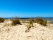 Orizzonte con la riva della spiaggia e del cielo blu fotografie stock libere da diritti