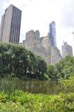 Orizzonte dal Central Park nel Midtown Manhattan da New York negli Stati Uniti immagini stock libere da diritti