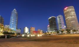 Orizzonte del centro della città di Tampa nel Riverwalk Fotografie Stock Libere da Diritti