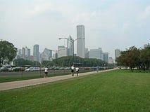Orizzonte del Chicago Immagine Stock