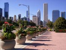 Orizzonte del Chicago Immagini Stock Libere da Diritti