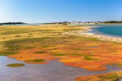 Orizzonte del paesaggio della laguna del fiume Fotografia Stock Libera da Diritti