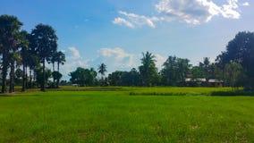 Orizzonte della città di Phnom Penh, Cambogia fotografia stock