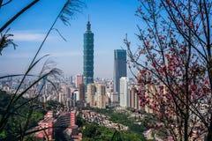 Orizzonte della città di Taipei con la costruzione di Taipei 101 osservata dalla montagna dell'elefante in Taiwan Immagine Stock