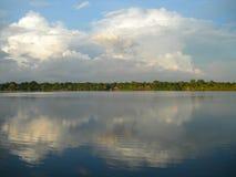 Orizzonte della foresta di simmetria sul fiume di Amazon Immagine Stock Libera da Diritti