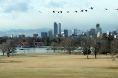 Orizzonte di caduta di Denver Immagine Stock