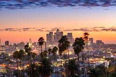Orizzonte di Los Angeles e palme Immagini Stock
