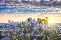 Orizzonte di Los Angeles e palme Fotografia Stock