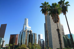 Orizzonte di Los Angeles e palme Fotografie Stock Libere da Diritti