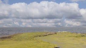 Orizzonte di mare, orizzonte video d archivio