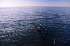 Orizzonte di mare al tramonto; Frangiflutti con i gabbiani nella priorità alta Fotografie Stock