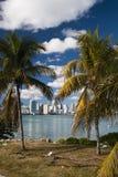 Orizzonte di Miami Fotografia Stock