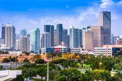 Orizzonte di Miami Florida Fotografia Stock