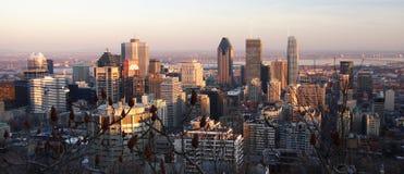 Orizzonte di Montreal fotografia stock