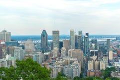 Orizzonte di Montreal di estate fotografia stock libera da diritti