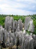 Orizzonte di pietra della foresta Fotografie Stock Libere da Diritti