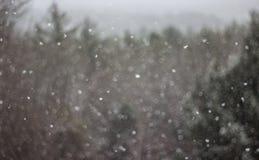 Orizzonte di Snowy Fotografia Stock Libera da Diritti