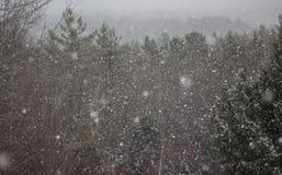 Orizzonte di Snowy Immagine Stock
