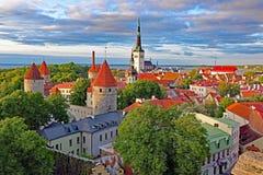 Orizzonte di Tallin, Estonia Fotografie Stock Libere da Diritti