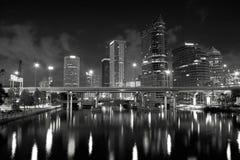 Orizzonte di Tampa Fotografia Stock Libera da Diritti