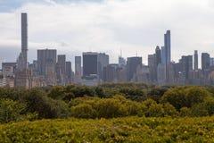 Orizzonte e Central Park di New York Fotografia Stock