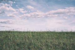 Orizzonte - erba sul prato e cielo con la nuvola fotografie stock libere da diritti