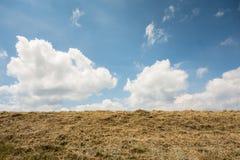Orizzonte il cielo Fotografia Stock