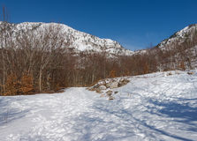 Orjen mountain. Montenegro Royalty Free Stock Images
