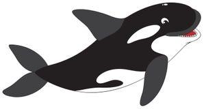 Orka royalty-vrije illustratie