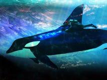 Orka en duiker royalty-vrije illustratie