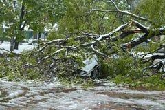 Orkaan-beschadigde auto Stock Foto