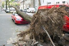 Orkaan beschadigde auto