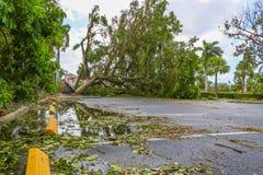 Orkaan Irma Damage royalty-vrije stock foto's