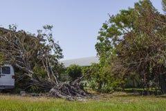 Orkaan Irma Damage stock afbeelding