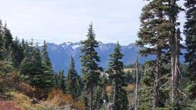 Orkaanrand, Olympisch Nationaal Park, WASHINGTON de V.S. - Oktober 2014: Een panorama op de Schiereilandbergen Royalty-vrije Stock Fotografie